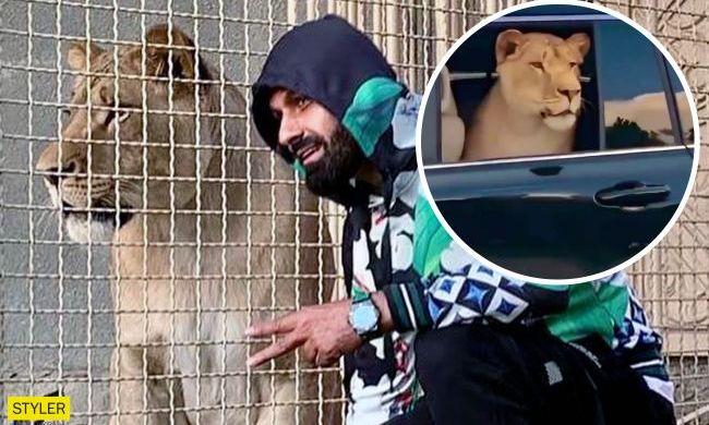 В Харькове депутат от ОПЗЖ рассекает с африканским львом в автомобиле (ВИДЕО)